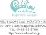 robita-rogo31